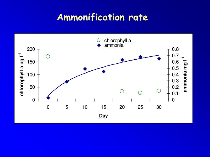Ammonification rate