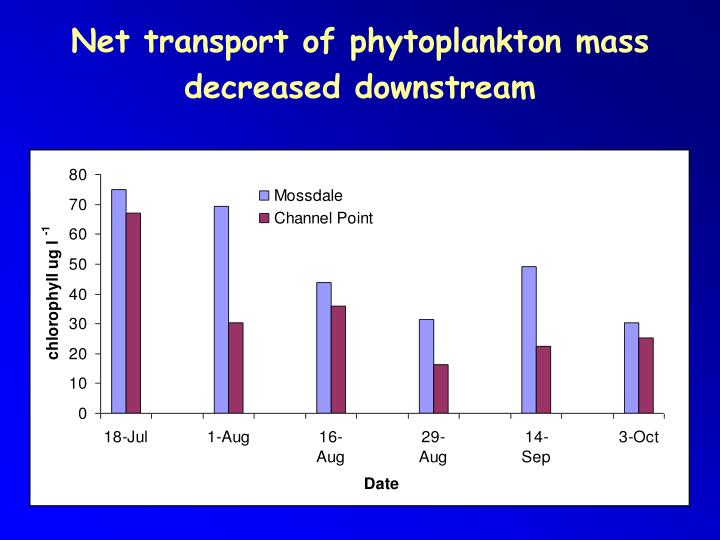 Net transport of phytoplankton mass decreased downstream