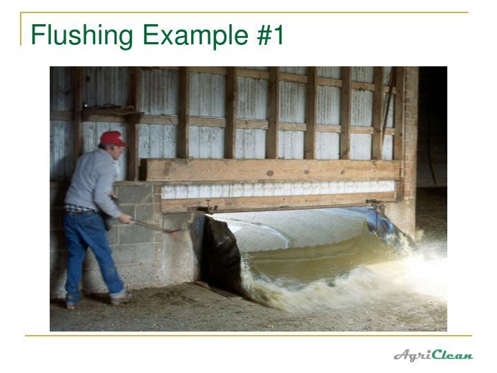Flushing Example #1