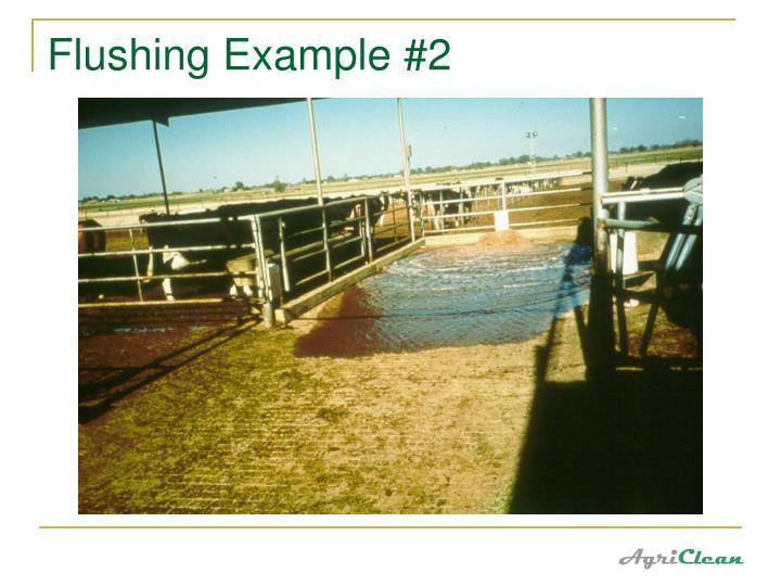 Flushing Example #2
