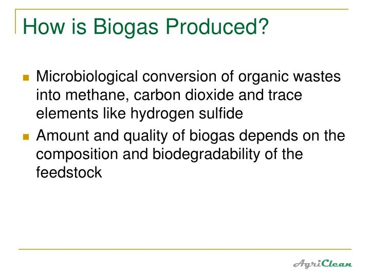 How is Biogas Produced?