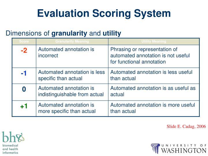 Evaluation Scoring System