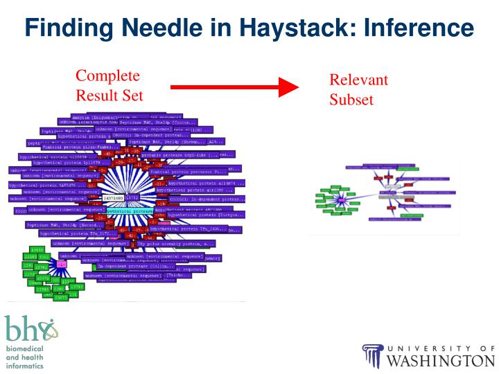 Finding Needle in Haystack: Inference