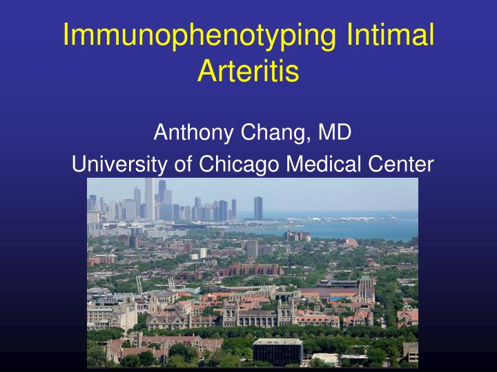Immunophenotyping intimal arteritis