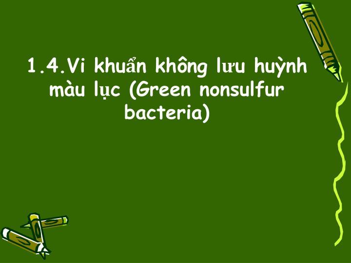 1.4.Vi khuẩn không lưu huỳnh màu lục (Green nonsulfur bacteria)