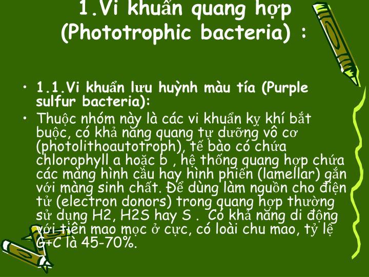 1.Vi khuẩn quang hợp (Phototrophic bacteria):