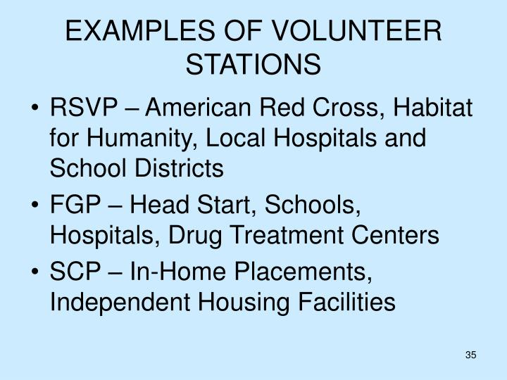 EXAMPLES OF VOLUNTEER STATIONS