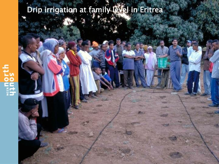 Drip irrigation at family level in Eritrea