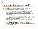 how does the survey work