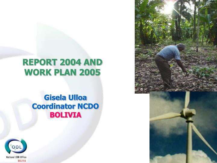 REPORT 2004 AND WORK PLAN 2005