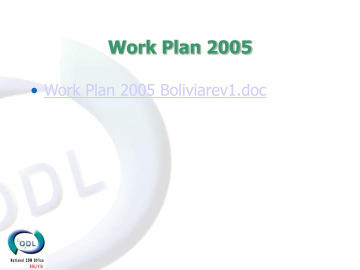 Work Plan 2005