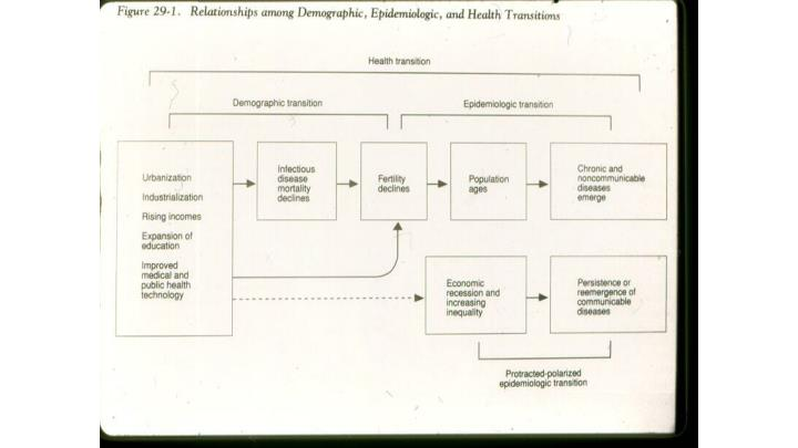 Terms epidemiologic transition
