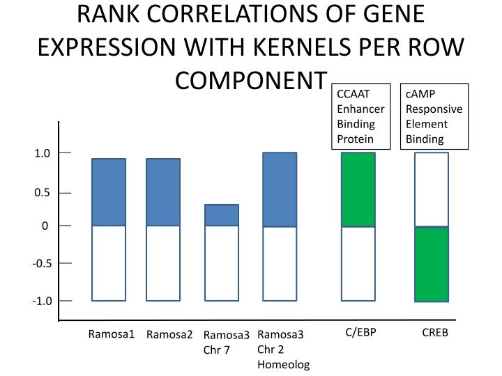 RANK CORRELATIONS OF GENE EXPRESSION WITH KERNELS PER ROW COMPONENT