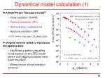 dynamical model calculation 1