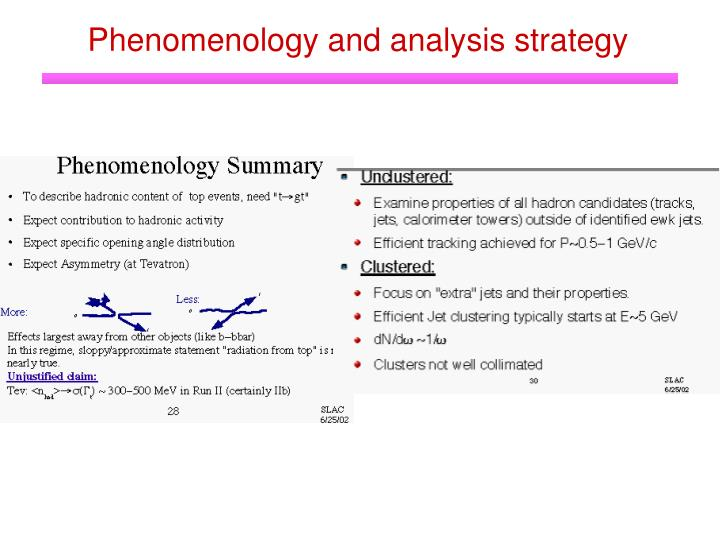 Phenomenology and analysis strategy