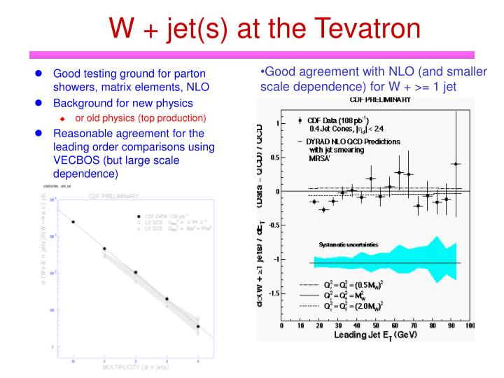 W + jet(s) at the Tevatron