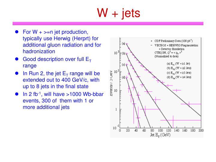 W + jets