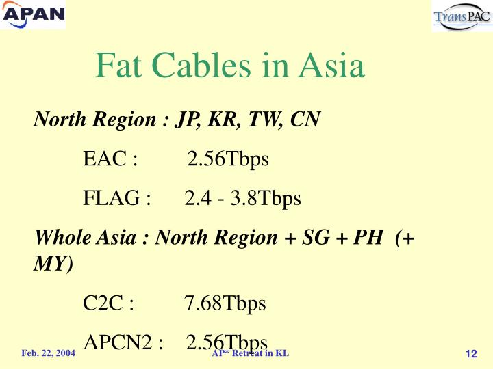 Fat Cables in Asia