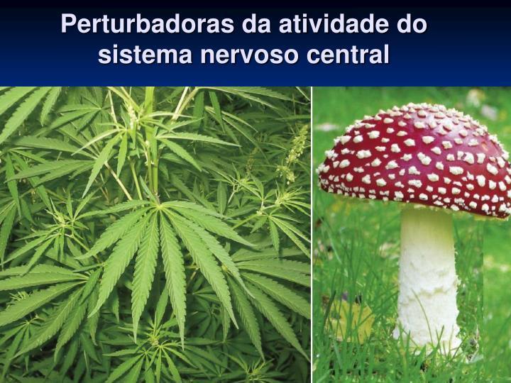 Perturbadoras da atividade do sistema nervoso central