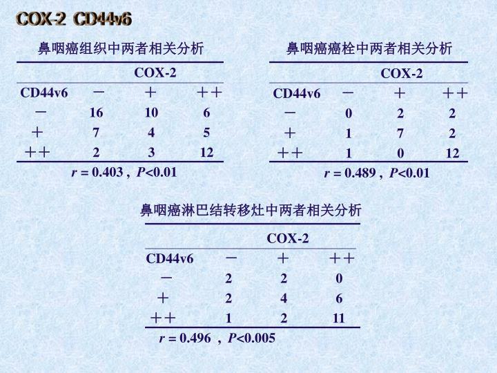 COX-2  CD44v6