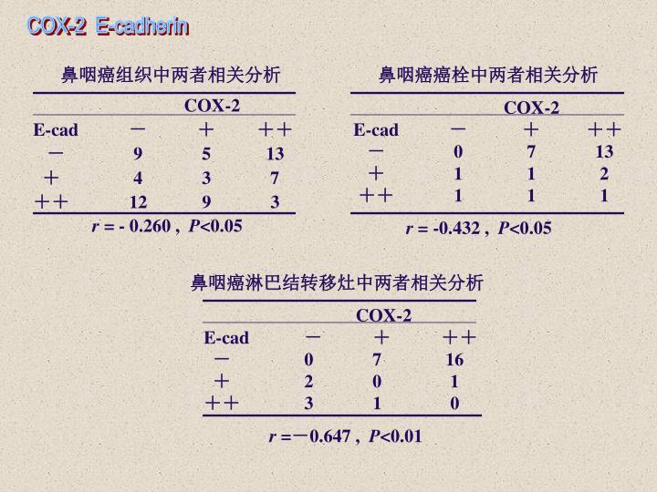 COX-2  E-cadherin