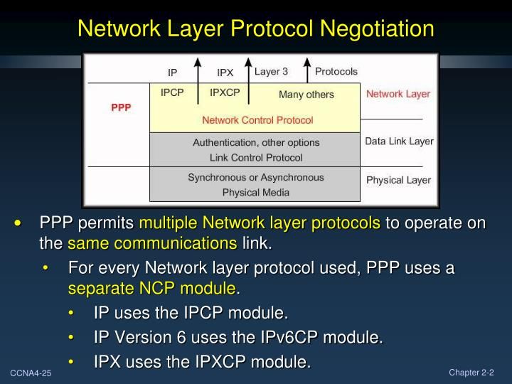 Network Layer Protocol
