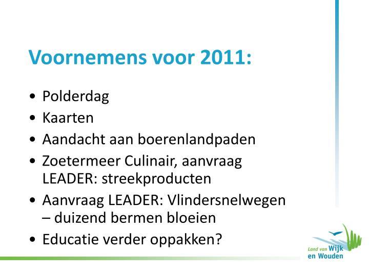 Voornemens voor 2011: