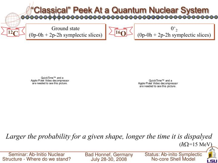"""Classical"" Peek At a Quantum Nuclear System"