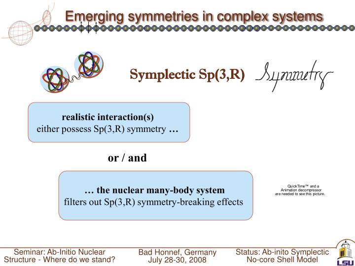 Emerging symmetries in complex systems