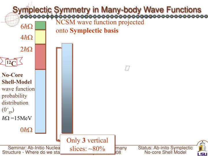 Symplectic Symmetry in Many-body Wave Functions