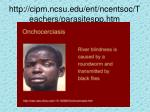 http cipm ncsu edu ent ncentsoc teachers parasitespp htm1