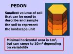 pedon