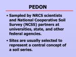 pedon1
