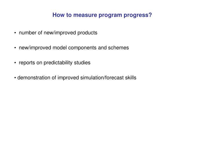 How to measure program progress?