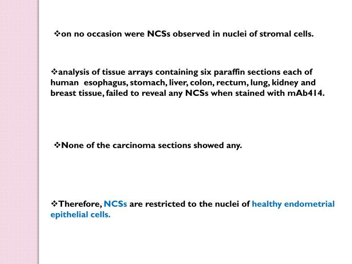 on no occasion were NCSs observed in nuclei of stromal cells.