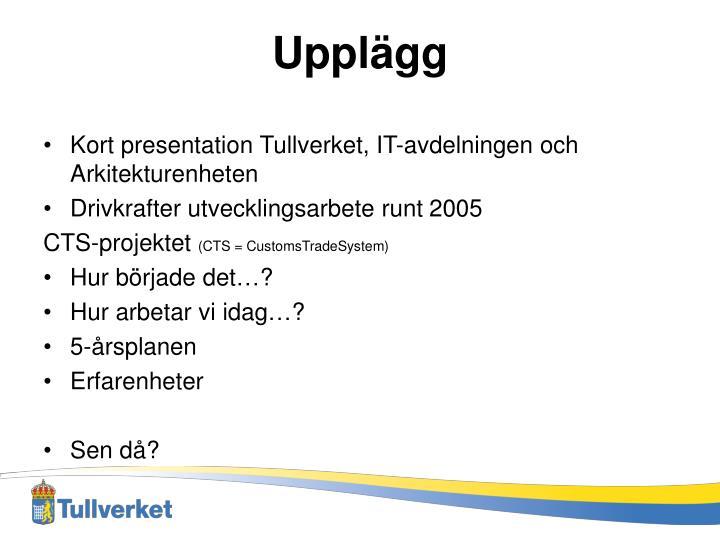 Kort presentation Tullverket, IT-avdelningen och Arkitekturenheten