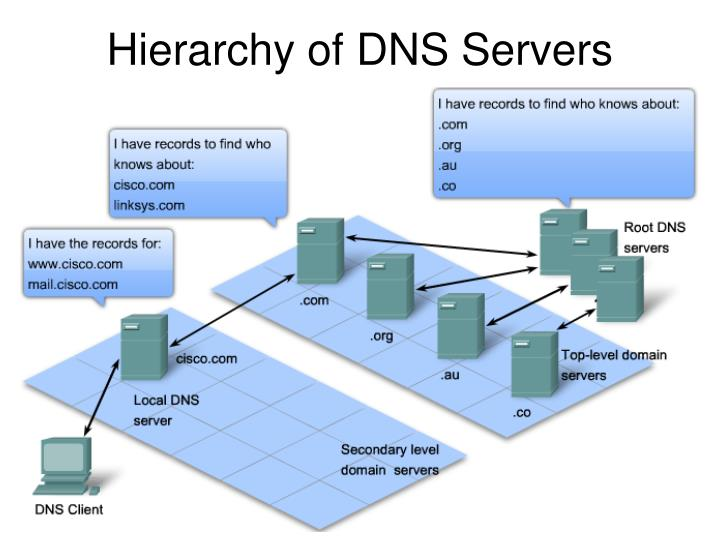Hierarchy of DNS Servers