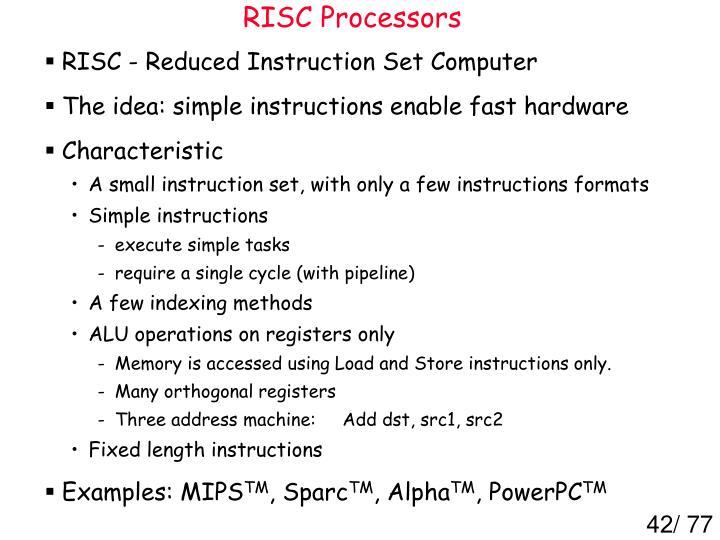 RISC Processors