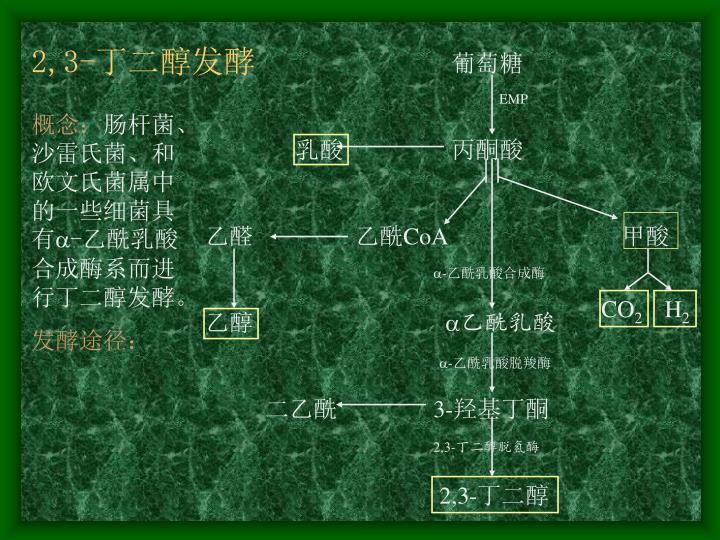 2,3-丁二醇发酵
