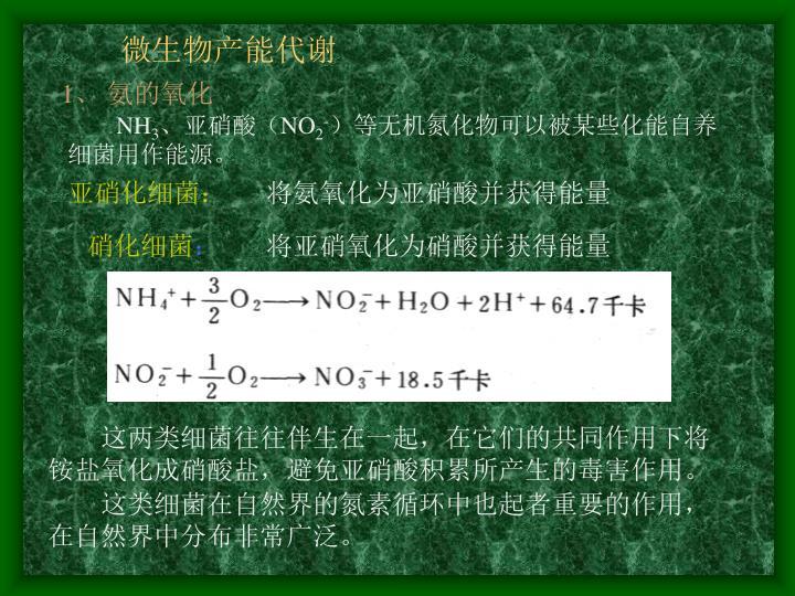 微生物产能代谢