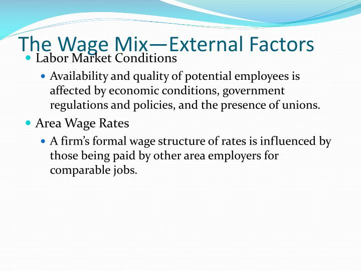The Wage Mix—External Factors