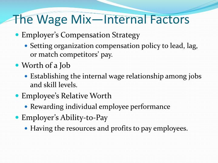 The Wage Mix—Internal Factors