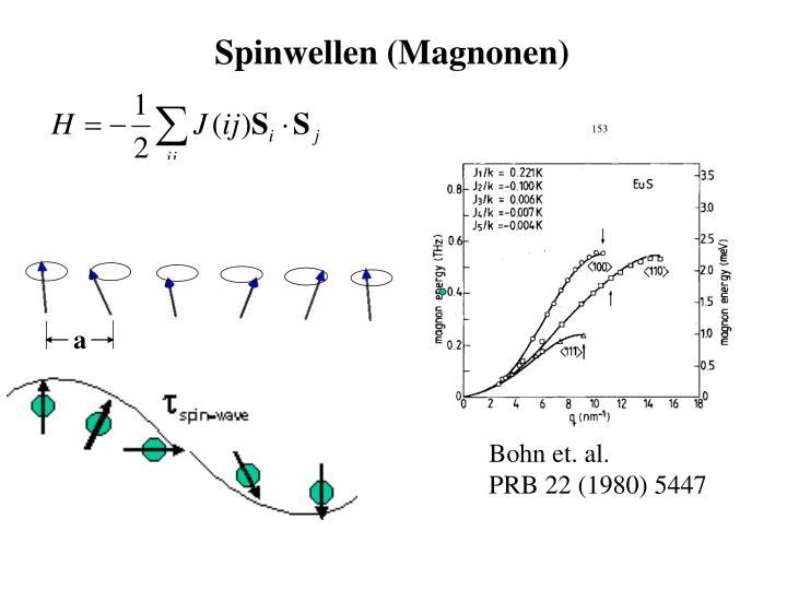 Spinwellen (Magnonen)