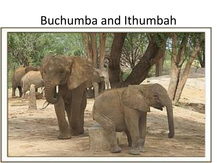 Buchumba and Ithumbah