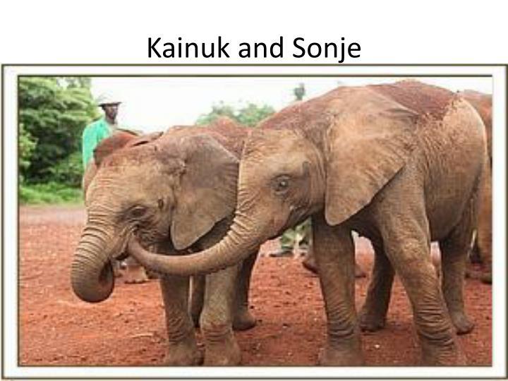 Kainuk and Sonje