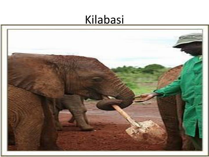 Kilabasi