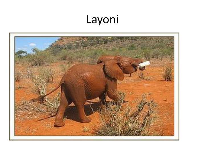 Layoni