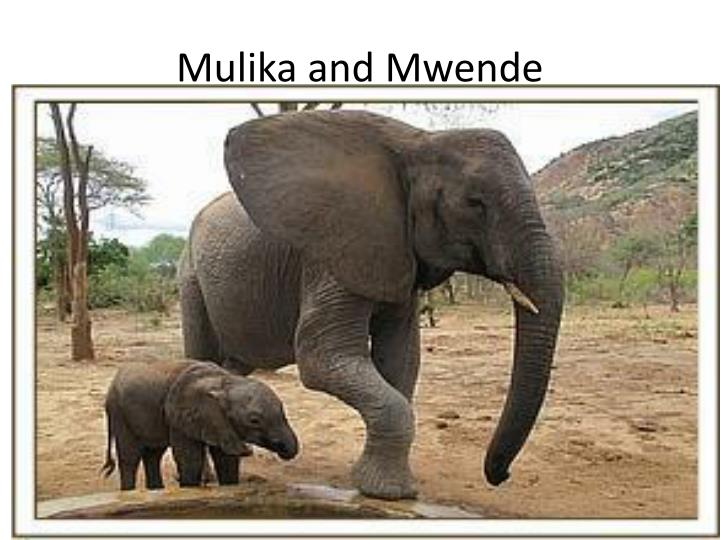 Mulika and Mwende