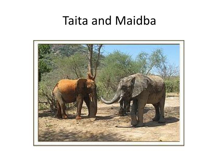 Taita and Maidba