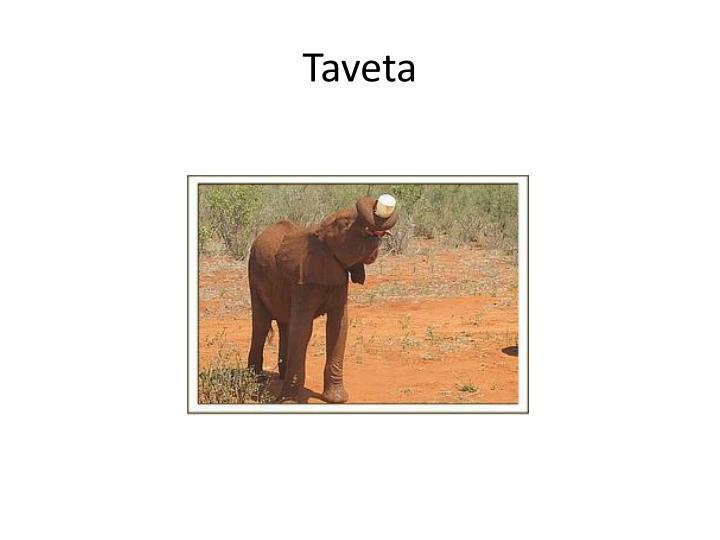 Taveta